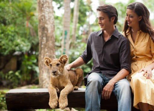 Bali zoo - InsightBali