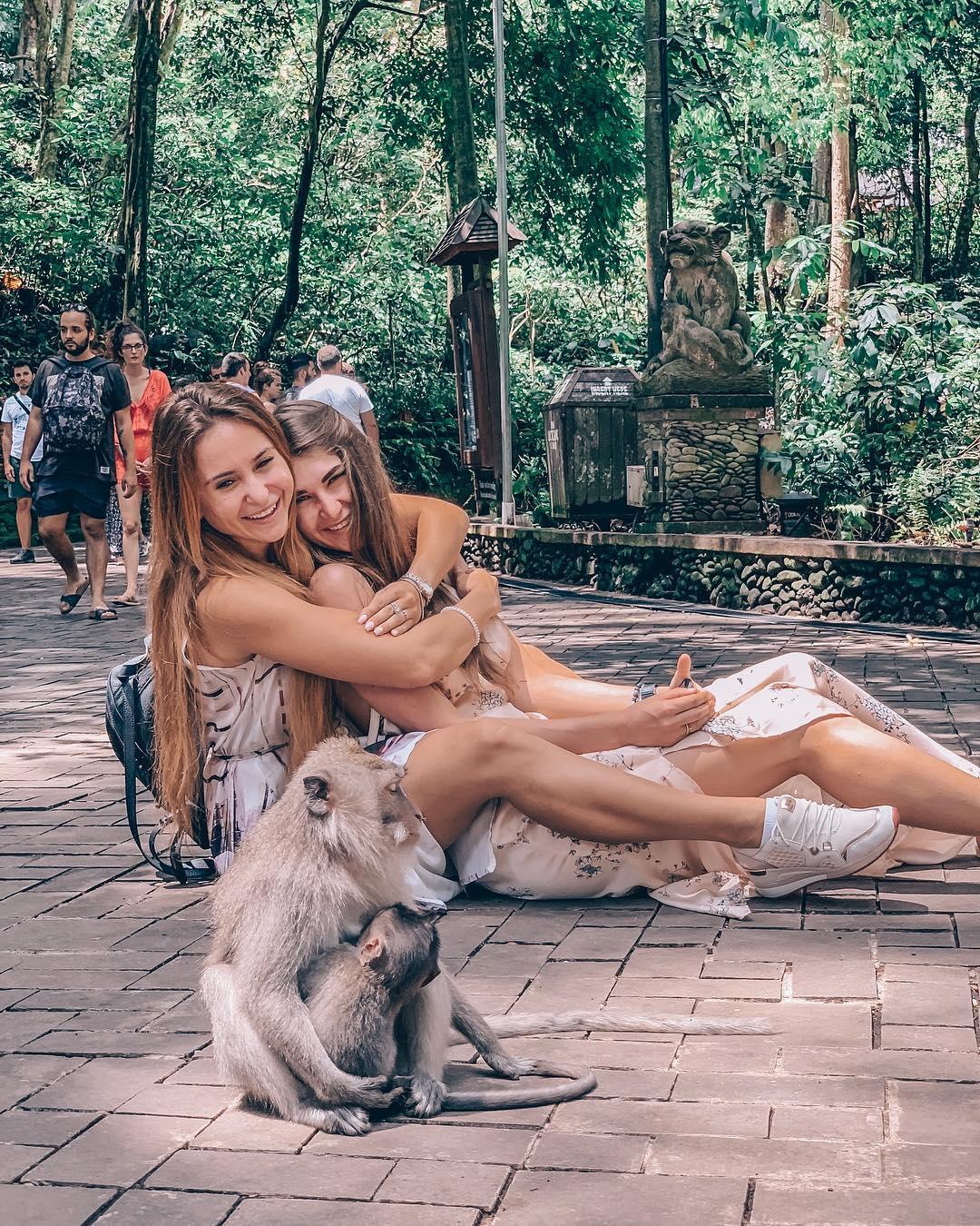 Monkey forest bali - Insight Bali