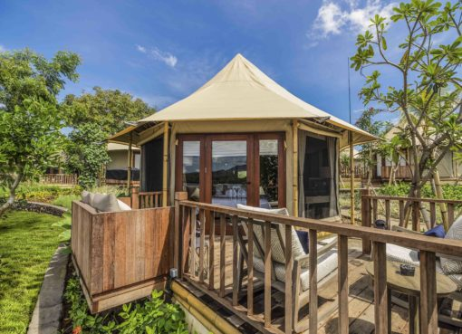 Menjangan Dynasty: close-to-nature Glamping Experience in the North