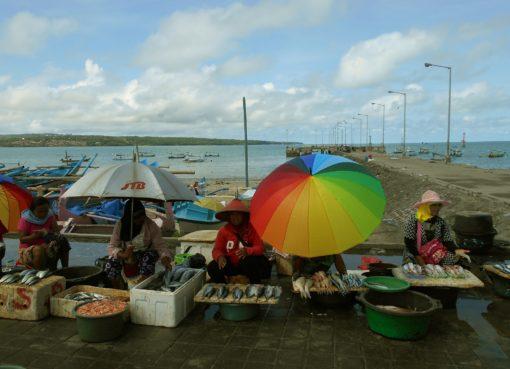 Kedonganan fish market - insight bali