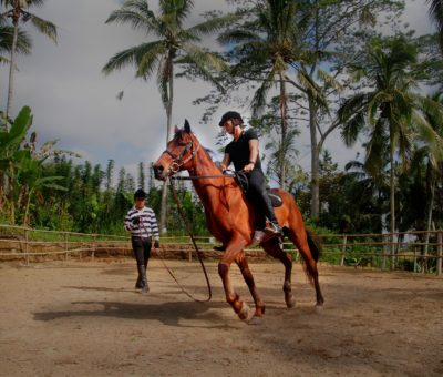 Saddle up and See the Other Side of Ubud