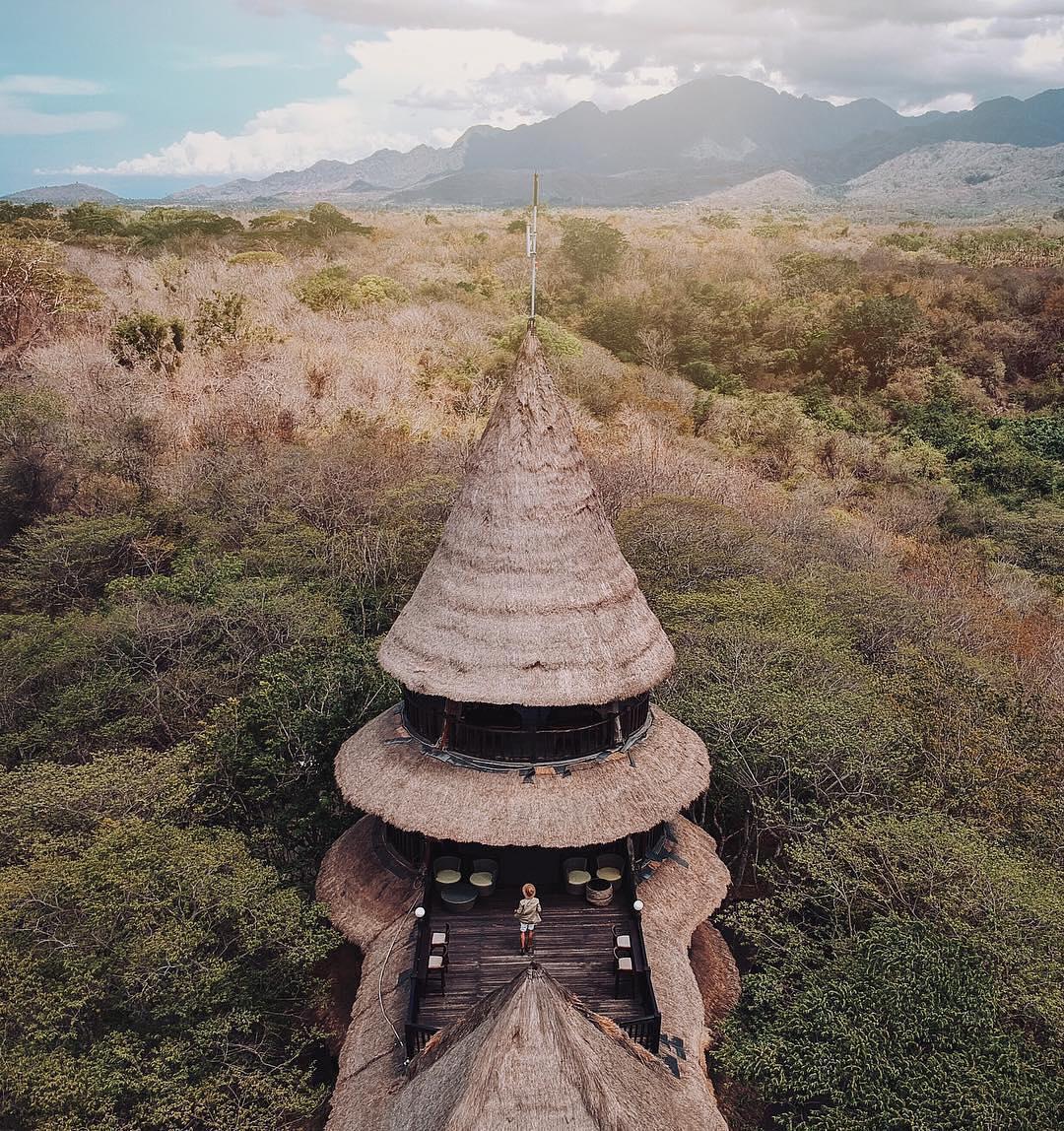 The Menjangan Bali - insight bali