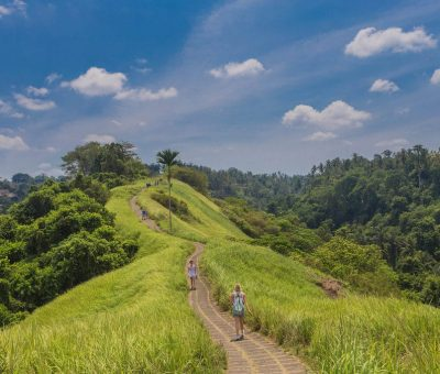 Morning and Afternoon Walk On The Campuhan Ridge Ubud