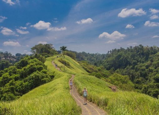Enjoy The Morning And Afternoon Walk On The Campuhan Ridge Ubud